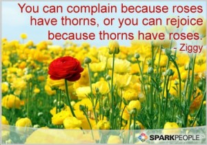 You-can-complain-because-roses-have-thorns