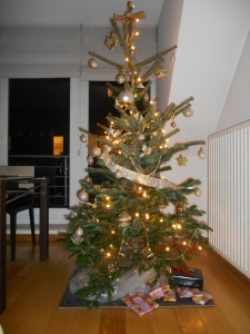 My 1st Christmas tree