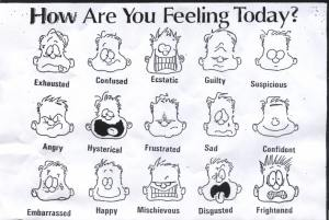 Our everyday emotions