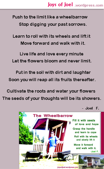 the wheelbarrow, inspirational poem about life, joys of joel poems, poem about wheelbarrow