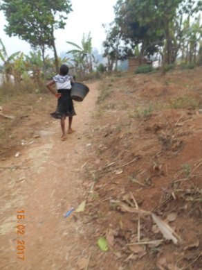 path-to-go-fetch-water