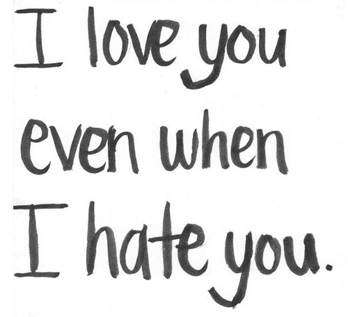 I hate and love you